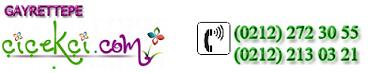 Gayrettepe Çiçek Sipariş- Gayrettepe Çiçekçi-0532 599 99 34