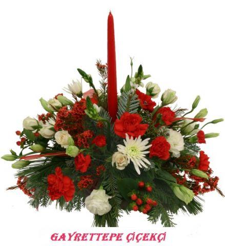 Yılbaşı Çiçeği 10